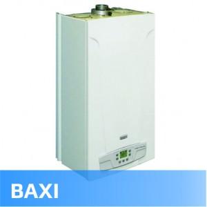 Baxi (26)
