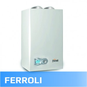 Ferroli (15)